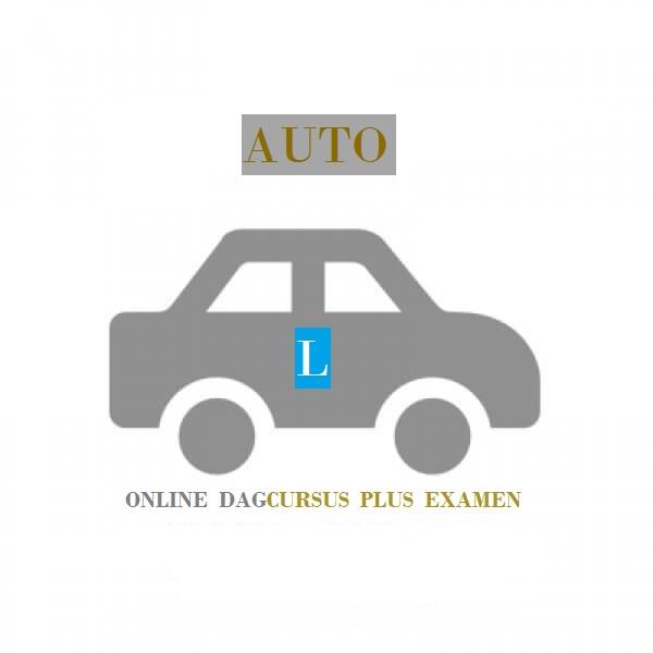 dagcursus-auto
